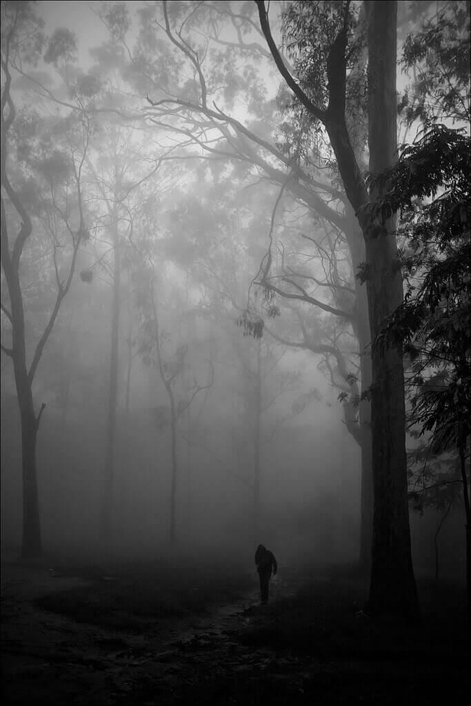 Nagaraju Hanchanahal, flickr.com