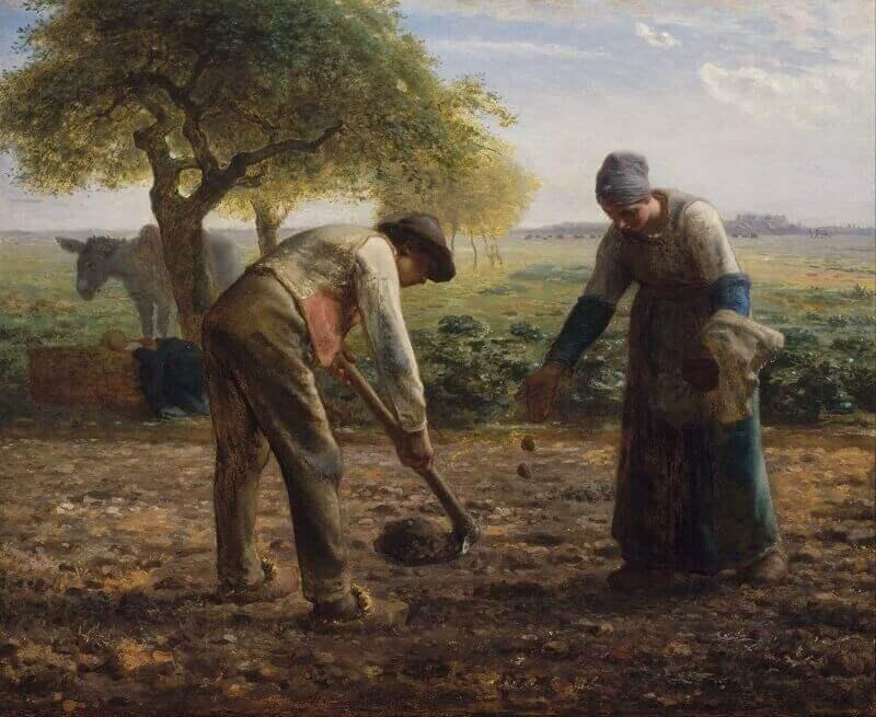 Jean-François Millet: Krumpli ültetők