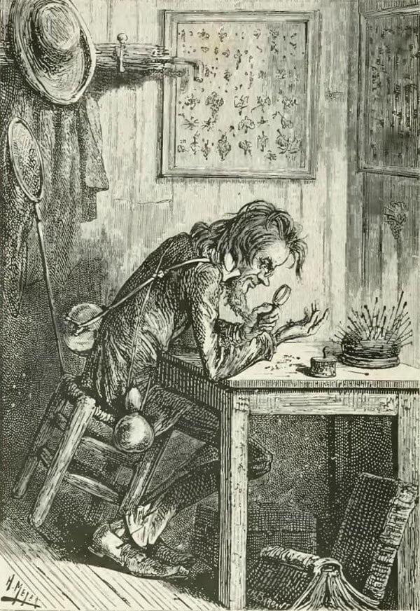 meyer-illusztracio