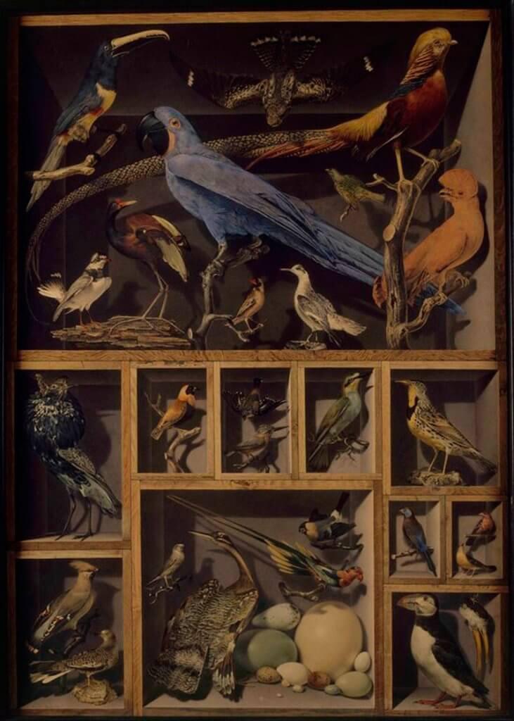 Alexandre Isidore Leroy De Barde: Idegen madarak találkozása, commons.wikimedia.org