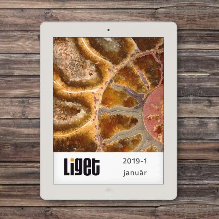 LIGET FOLYÓIRAT | 2019 JANUÁR