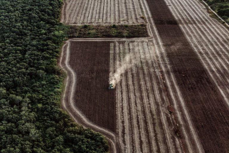 A MENNONITÁK ÉS A GMO SZÓJA