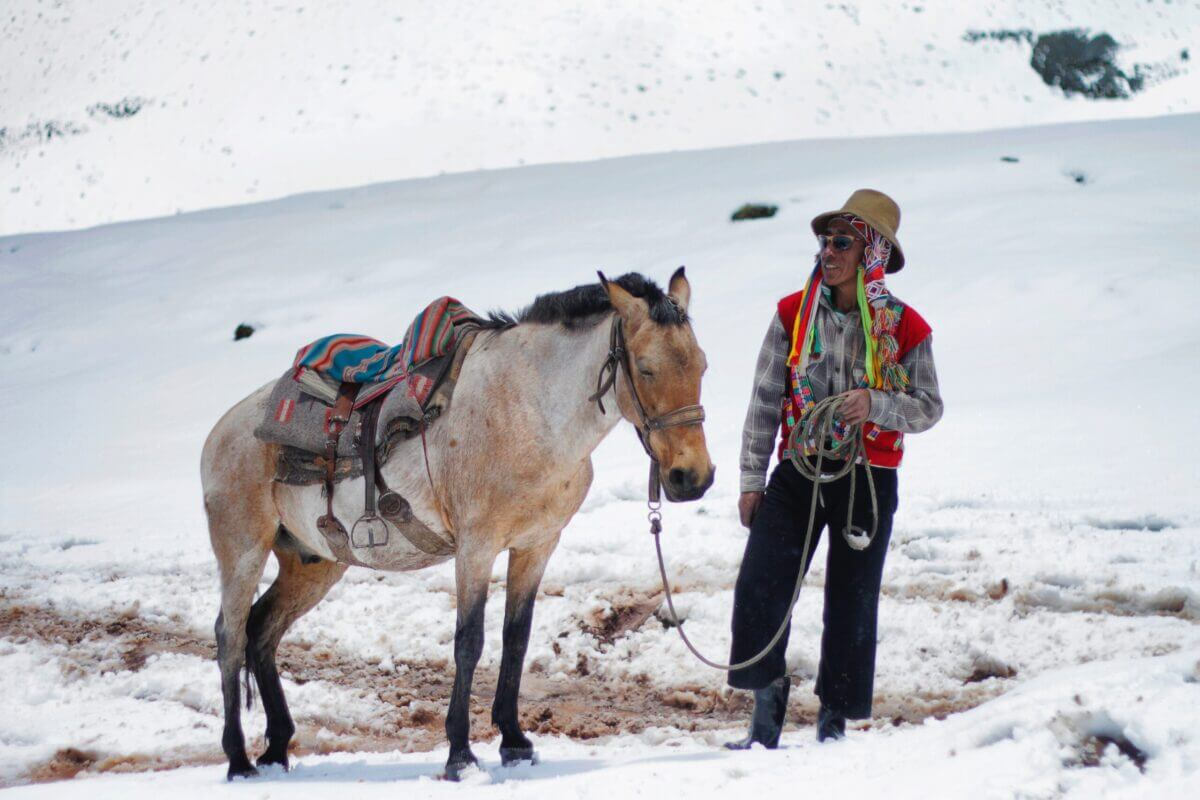 person holding horse tie on snow filled area